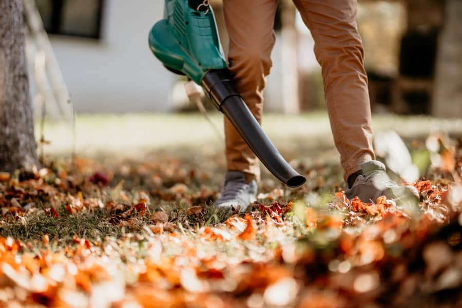 Quiet leaf blower.