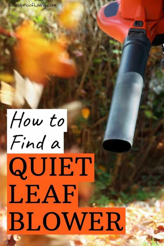 How to find the best quiet leaf blower.