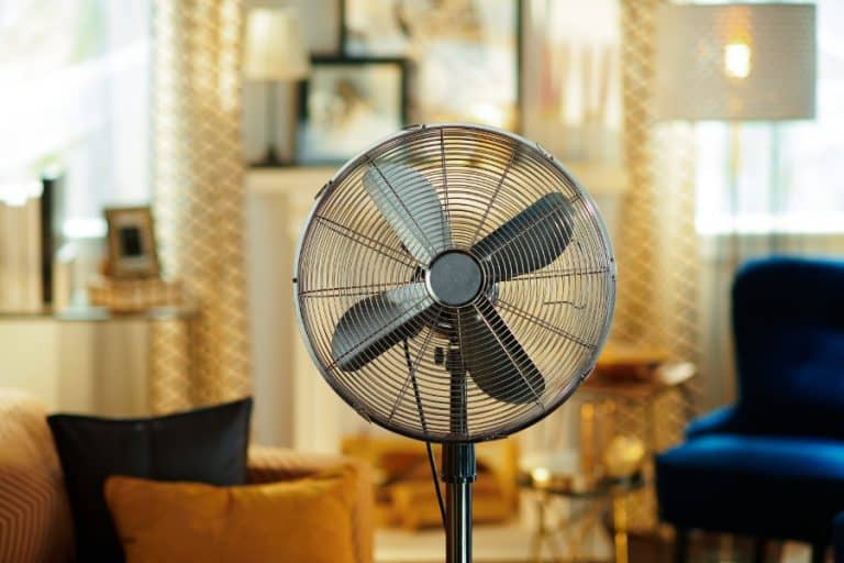 The best quiet pedestal fan. How to find the quietest fans on the market.