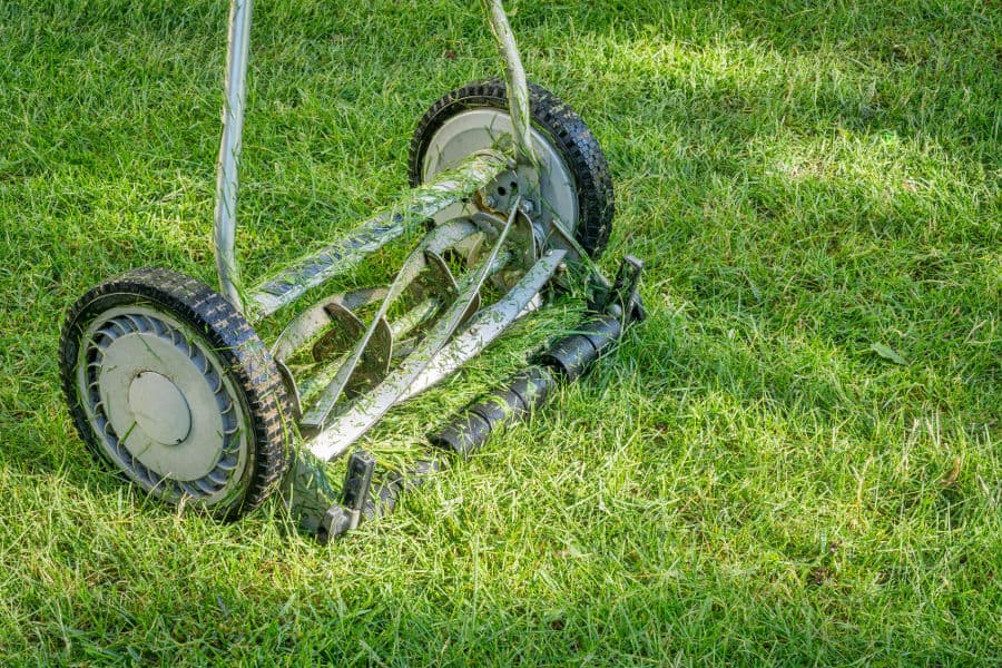 Push reel mower for less noise while mowing your lawn.