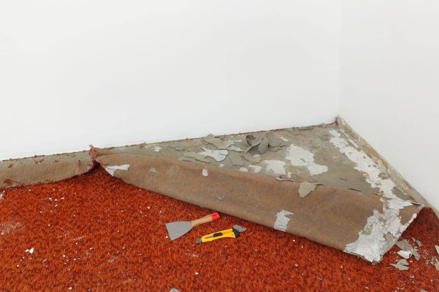 Remove the existing carpet.