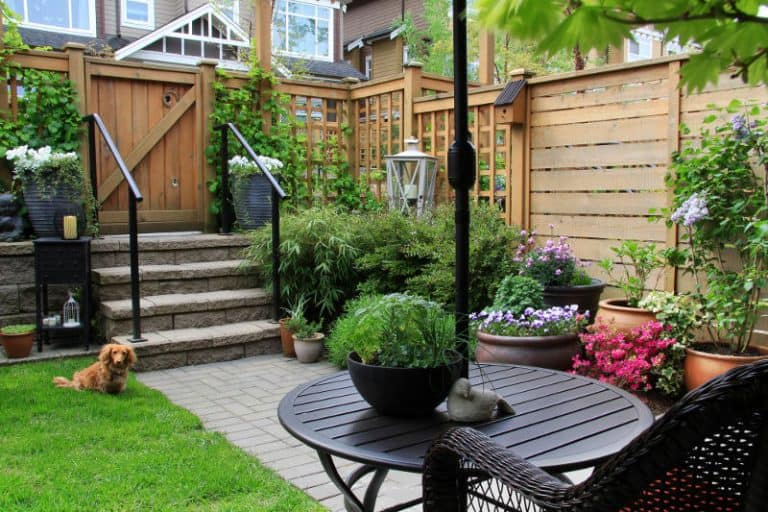 Backyard noise reduction: How to reduce traffic noise in the backyard.